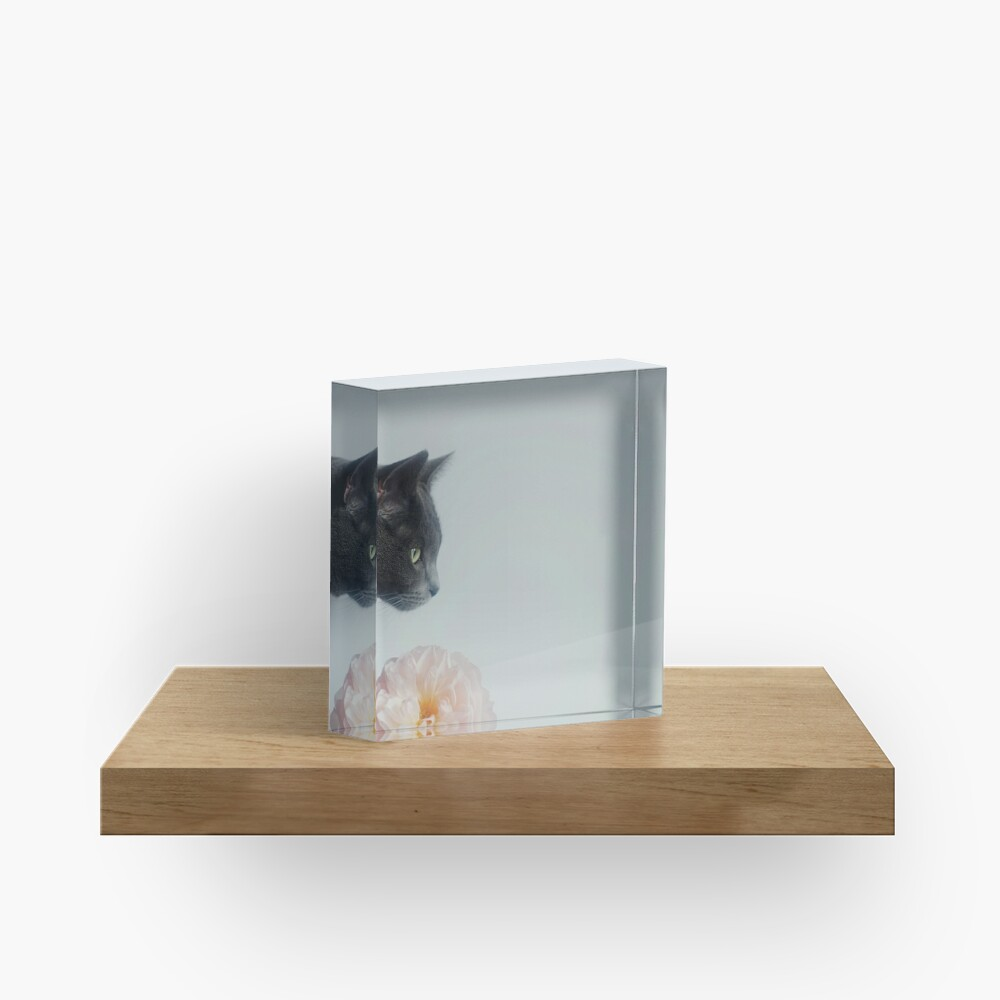 Russian Blue Acrylic Block