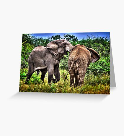 ELEPHANTS IN AFRICA Greeting Card