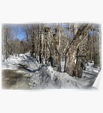 Sugaring Season on Farnsworth Hill  Poster