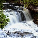 Jones Falls by Heather Crough
