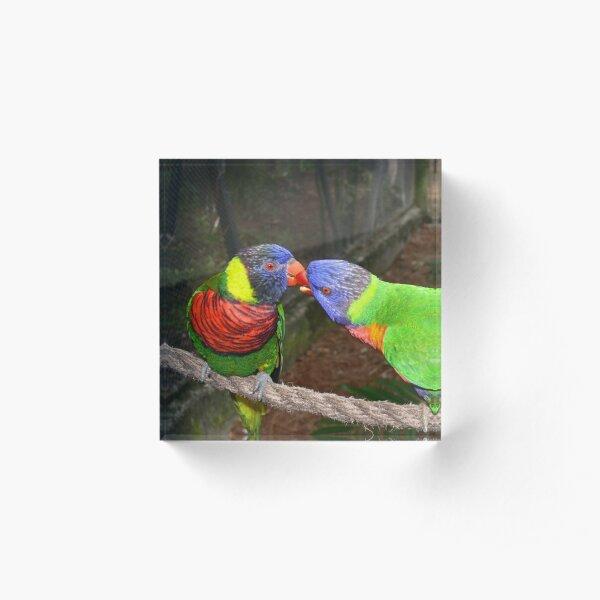 Love Birds Acrylic Block