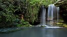 Sydney Waterfalls - Berowra Creek by vilaro Images