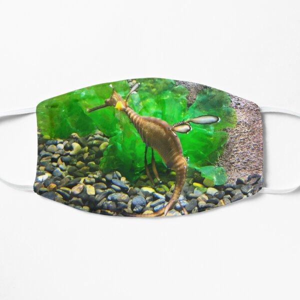 Leafy Sea Dragon Flat Mask