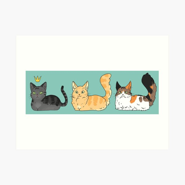 Petits chats Impression artistique