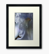 Purple Passion ~ Framed Print