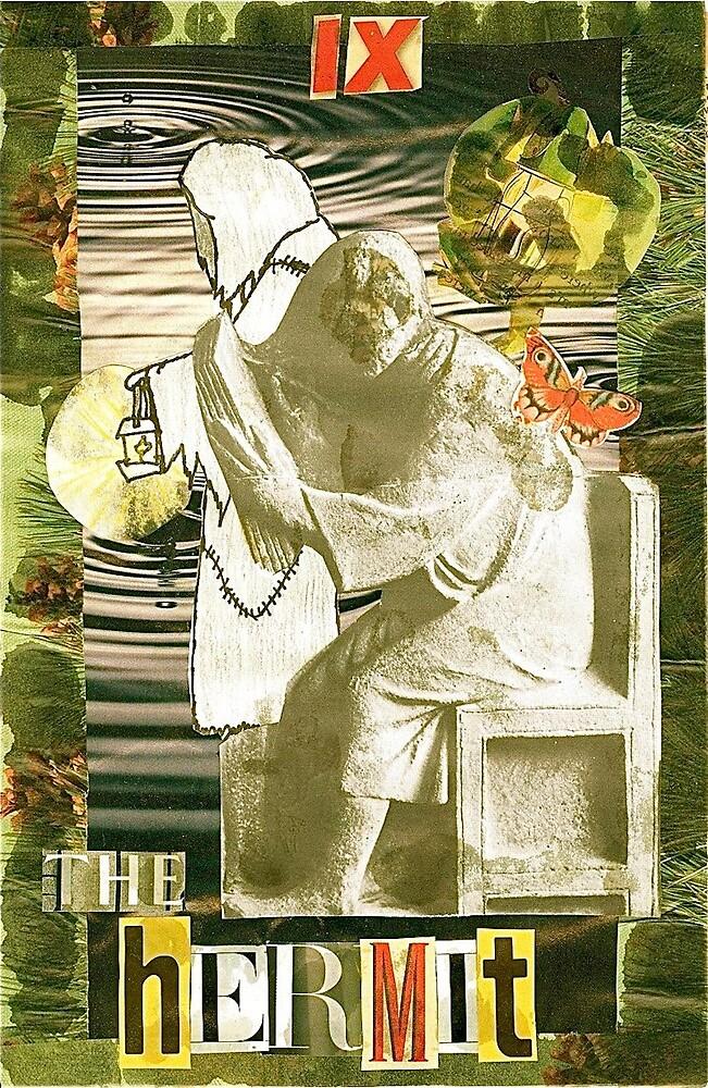The Hermitot by Bridget  Robbins