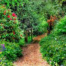Pathway over the bridge HDR by Anthony Hedger Photography