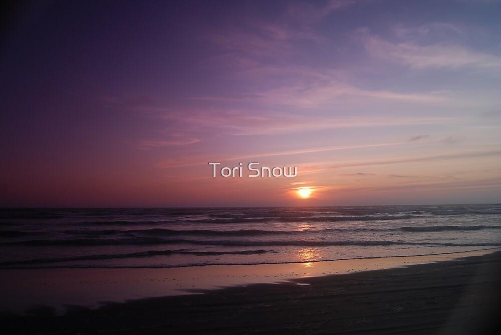 Vivid Ocean Sunset by Tori Snow