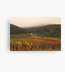 Misty Bright Autumn Vineyard Canvas Print