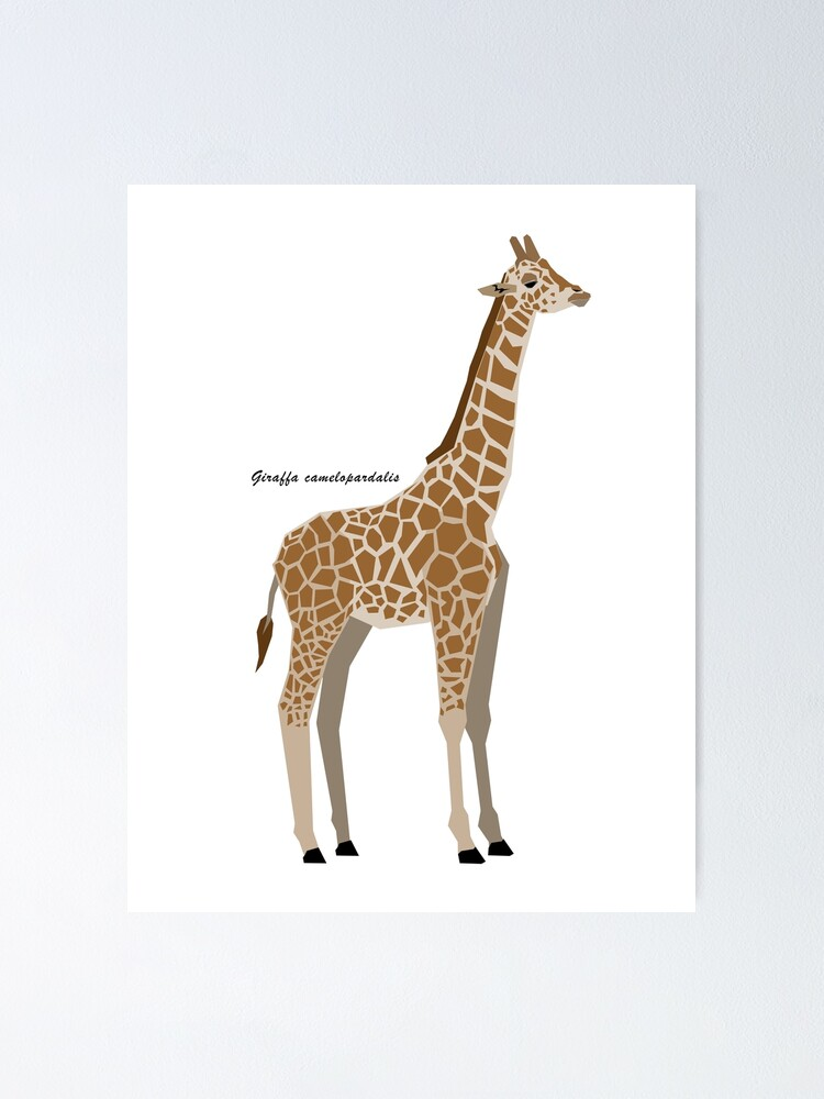 Giraffe Portrait African Nature Animal Art Poster 17/'/' x 23/'/'