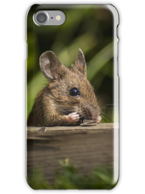 Field Mouse Snack Bar by George Davidson