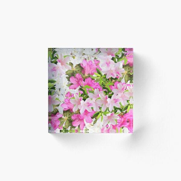 Azaleas Acrylic Block