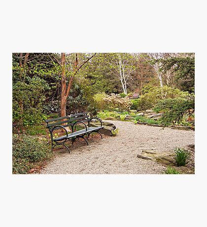 Spring In The Botanic Gardens Photographic Print