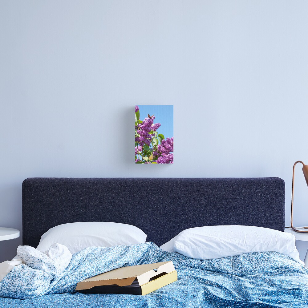 Lilac Bloom and Butterfly Canvas Print
