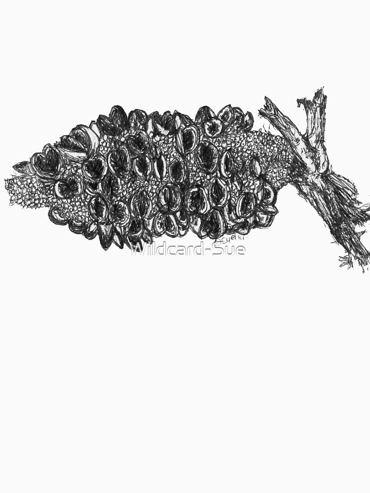 Banksia Pod by Wildcard-Sue