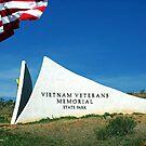 Honoring The Fallen - Memorial Weekend 2013 by © Loree McComb