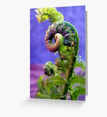 pig tails on a fern Greeting Card