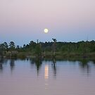 MOONRISE ON BEAR CREEK by May Lattanzio