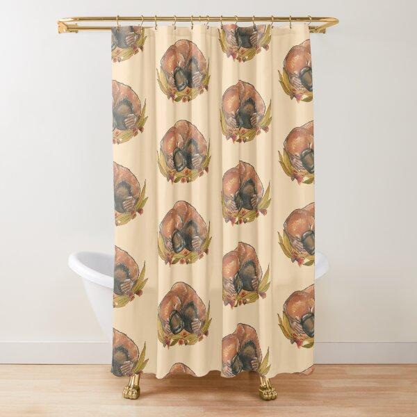 Sleepy platypus Shower Curtain