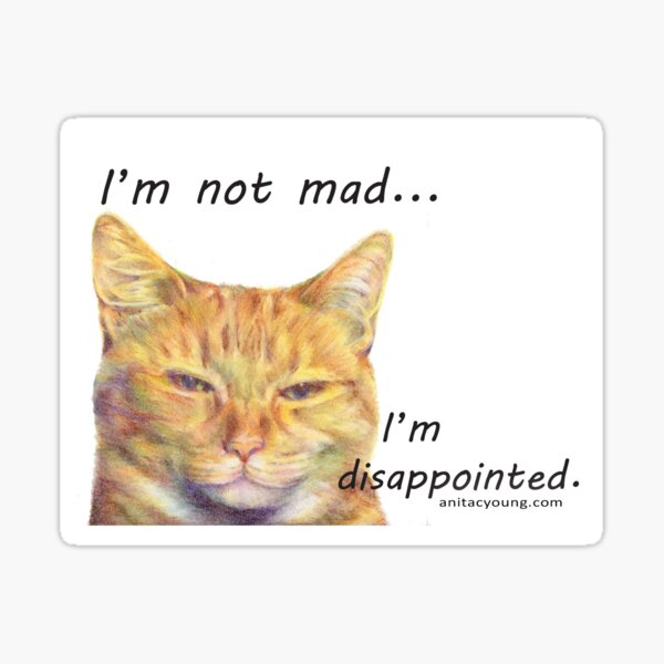 Disappointed Cat Sticker