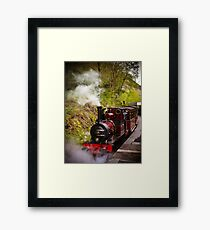 Steam Locomotive Dolgoch Framed Print