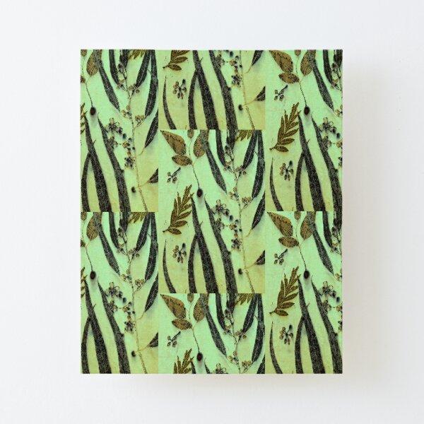 Green Eucalyptus Canvas Mounted Print