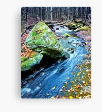 From Last Fall Canvas Print