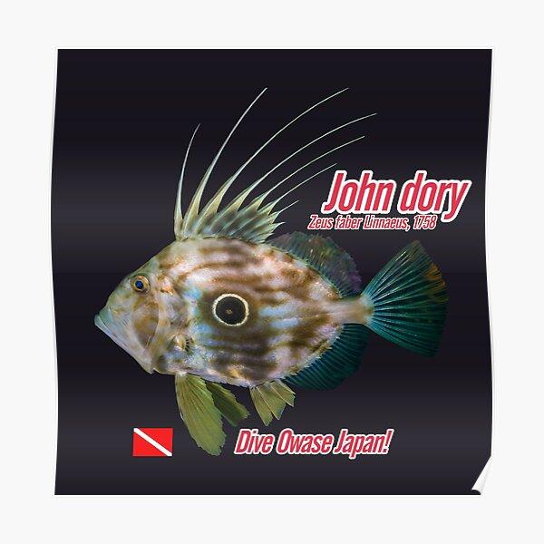John dory cut out print Poster