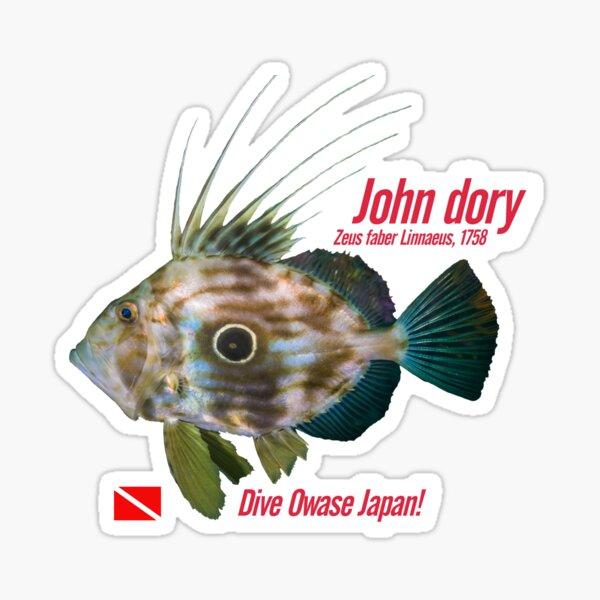 John dory cut out print Sticker