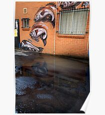 fish in a puddle Poster