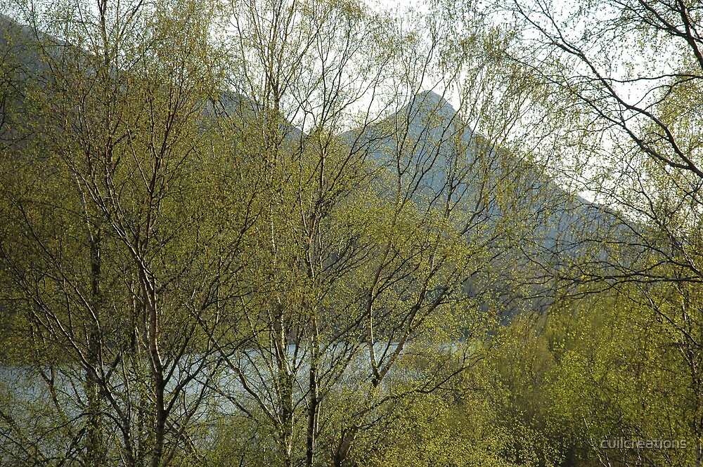 The Pap of Glencoe in Spring by cuilcreations