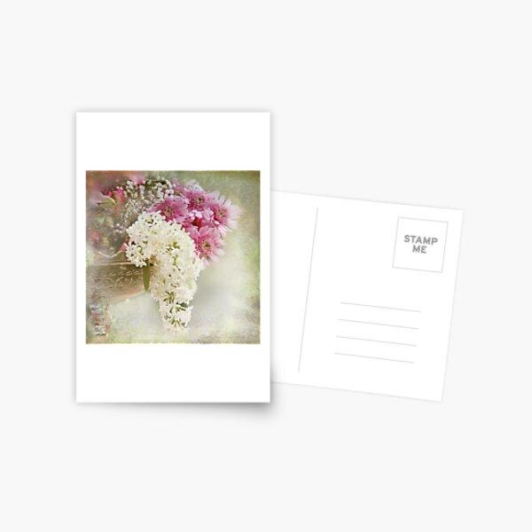 White lilacs Postcard