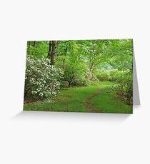Mountain Laurel - Harriman Park Greeting Card