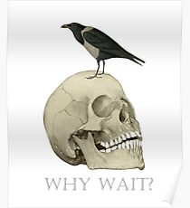 Why Wait? - Skull And Raven Poster