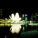Art Science Museum - Lomo by chylng