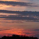 Beautiful Sunset by FrankieCat