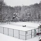 court's open by Paul Kavsak