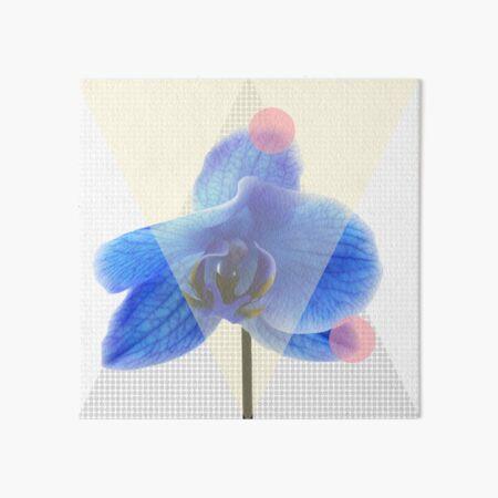 Blaue Orchidee mit Pinken Punkten Galeriedruck