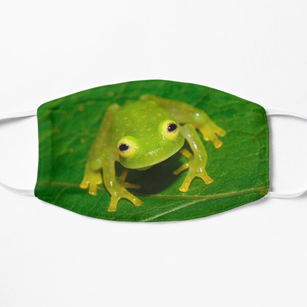 Glass Frog Flat Mask
