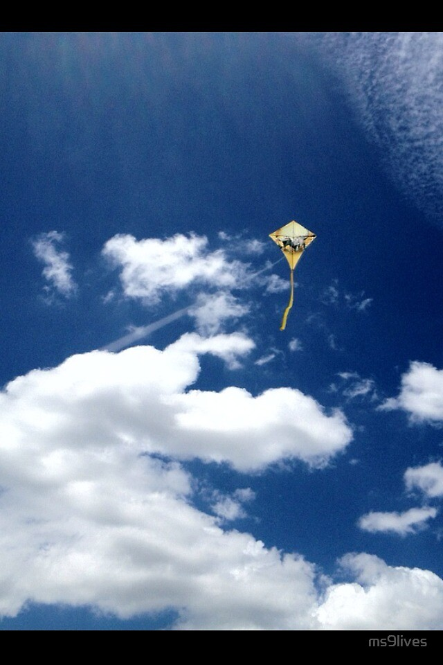 Go Fly a Kite by ms9lives