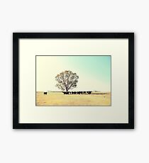 A Cow, A Tree and Some More Cows  Framed Print