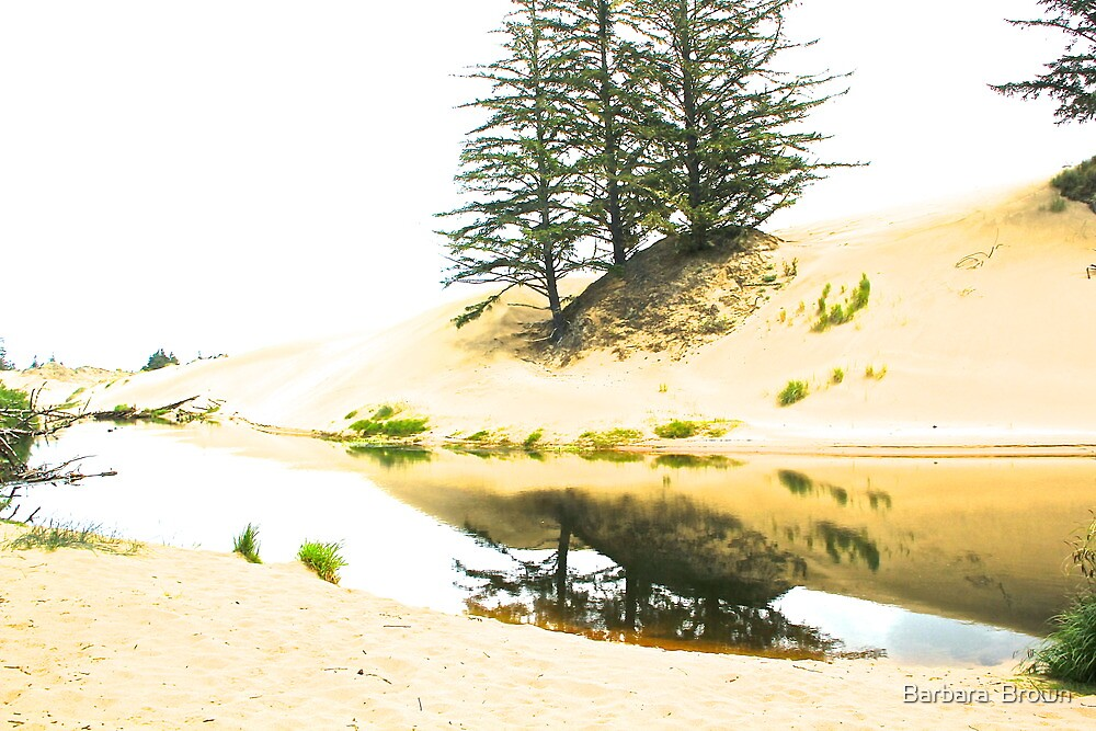 Water and Sand by Barbara  Brown