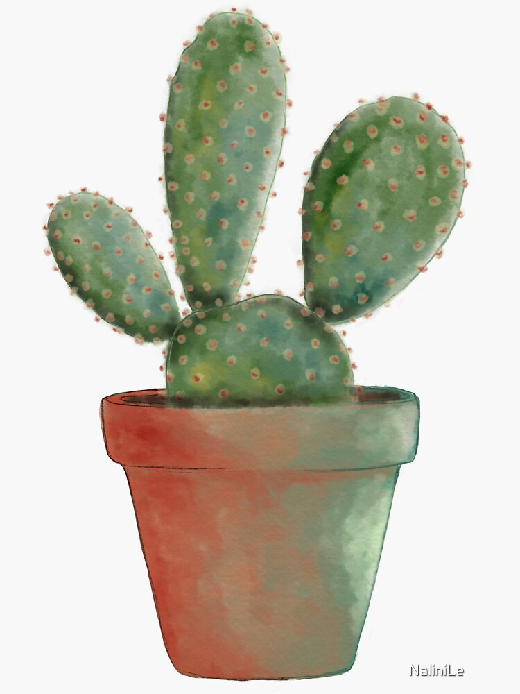 Cactus Sabres plant watercolor illustration by NaliniLe