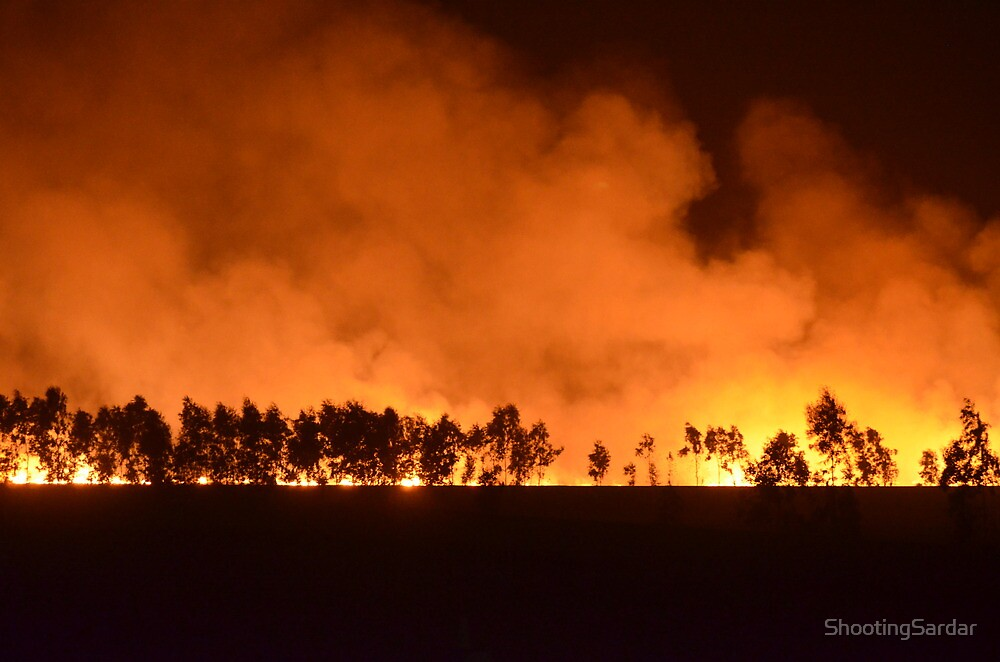 Burning Field... by ShootingSardar