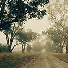 Down a foggy lane by Linda Lees