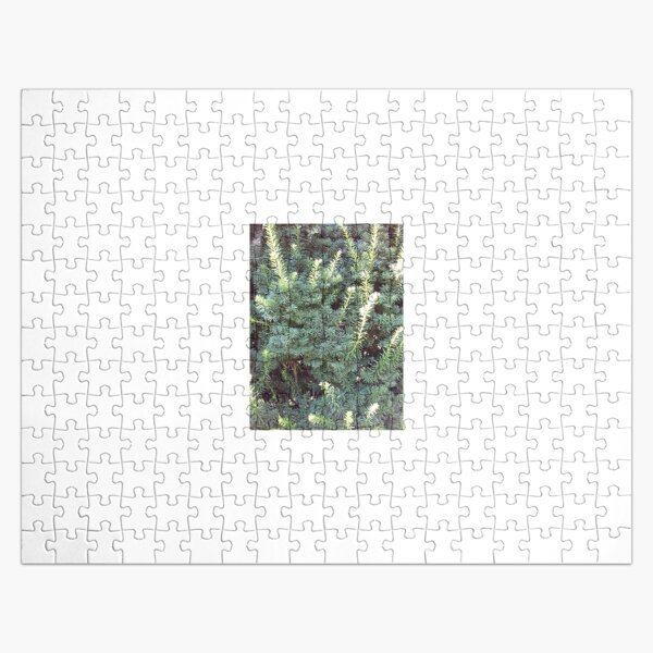 Green Jigsaw Puzzle