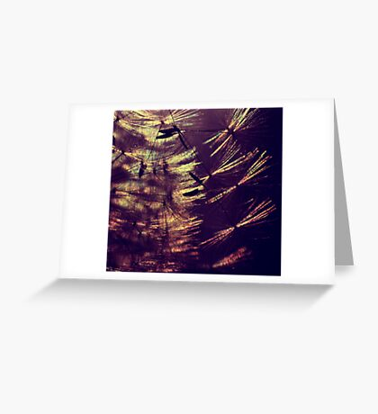 follow the light and you will find your rainbow Greeting Card