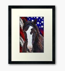 Mustang Freedom Framed Print