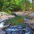 Curumbin Creek by sarcalder
