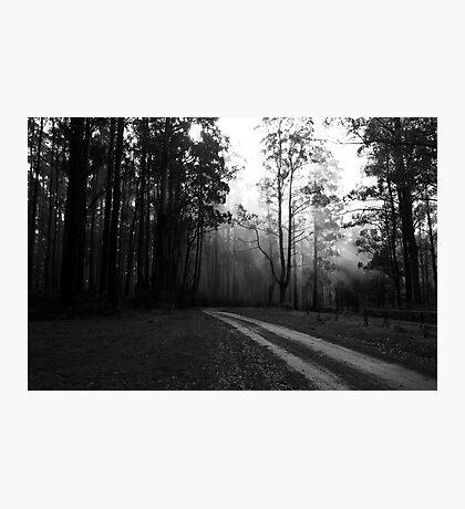 Foggy Mountain Top Photographic Print